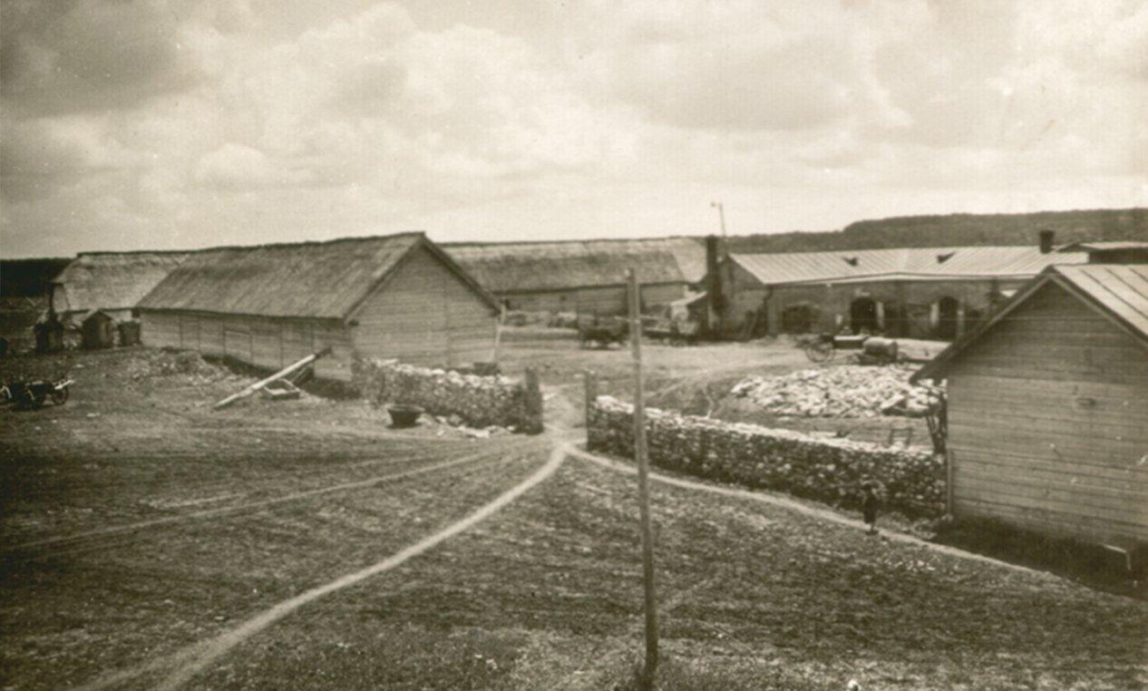 Скотный двор и свинарники